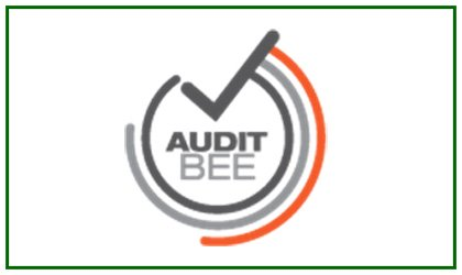 Audit BEE Training (Pty)